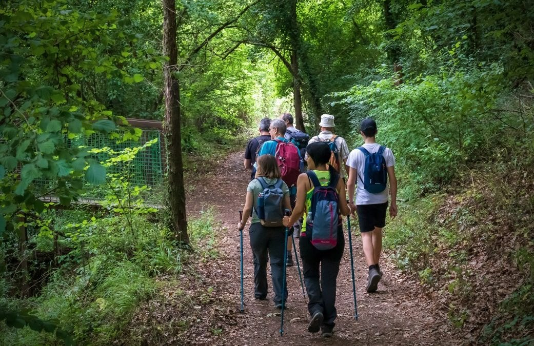 How To Find the Best Hiking Groups Near Me